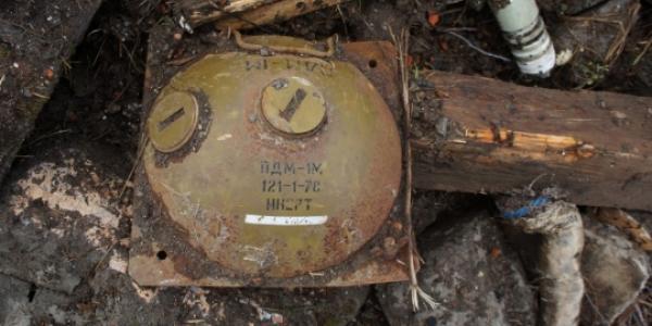 Під Кременчуком в лісосмузі виявили міну
