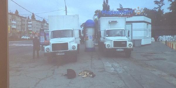 Фотофакт, который поразил городские власти Кременчуга
