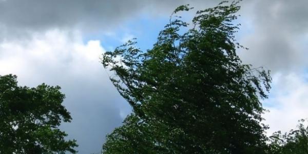 Завтра і післязавтра прогнозуються сильні пориви вітру