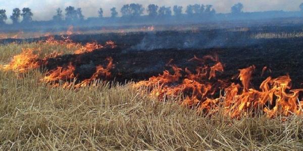 У вихідні в Кременчуцькому районі сталося чотири пожежі