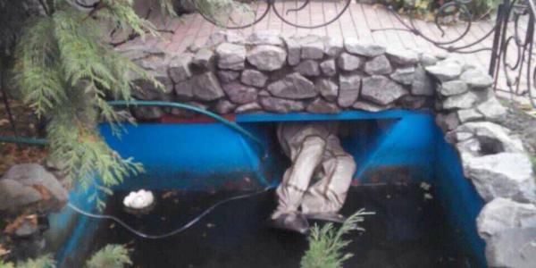 В Кременчуге спасатели доставали собаку из крепежа фонтана