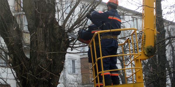 У центрі Кременчука через «стрижку» дерев терміново відключили світло