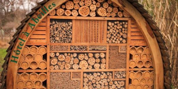 На Полтавщині збудують найбільший готель для комах