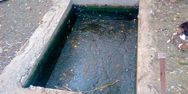 Однорічна дитина втопилася у ємності для домашньої птиці