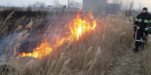 Спасатели тушили сухую траву почти на 3 га земли