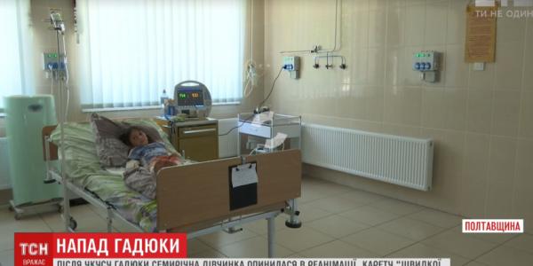 7-річна дівчинка, яку під Кременчук вкусила гадюка, сьогодні буде виписана з реанімації