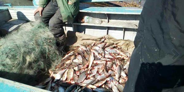 Кременчуцька водна поліція затримала браконьєра,який наловив рибу занесену до Червоної книги