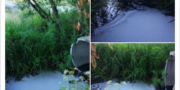 У Кременчуці річка Сухий Кагамлик вкрилася підозрілою піною