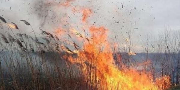 Кременчук в вогні: майже 20 гектарів очерету і сухої трави в місті і навколо вигоріло цього року