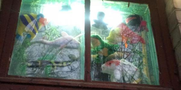 У під'їзді Кременчука поселили акваріум з екзотичними рибами