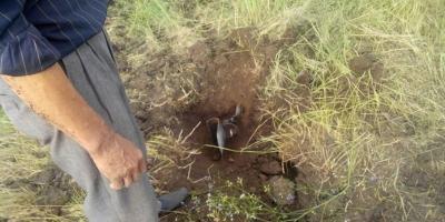 В Полтаве 20-летний парень погиб от взрыва гранаты