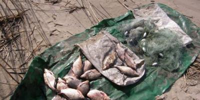 В Кременчугском море задержали браконьера