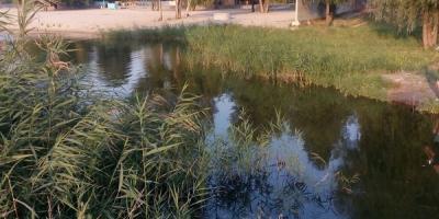 Сухой Кагамлык мелеет: жители подозревают Погребного