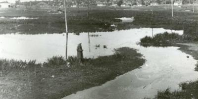 Кременчужанам показали, якою була річка Крива Руда більш, ніж 80 років тому
