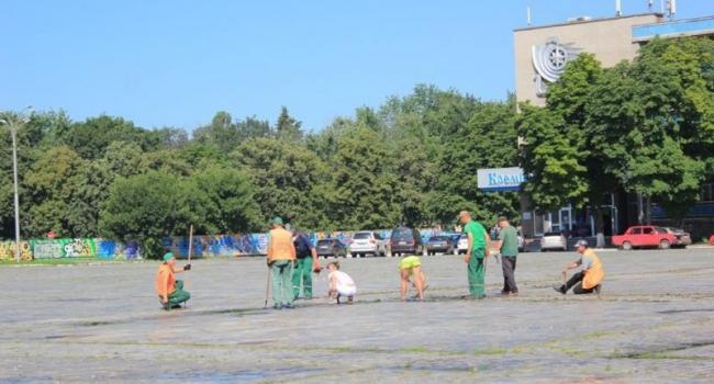 Фотофакт: площадь Победы избавляют от сорняков