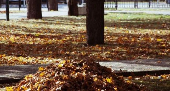 До 1 декабря в Кременчуге закончится зачистка дворов