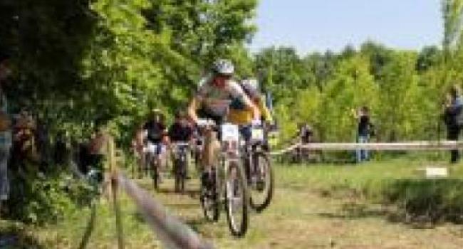 На Деевской горе определись победители открытого чемпионата по велогонкам