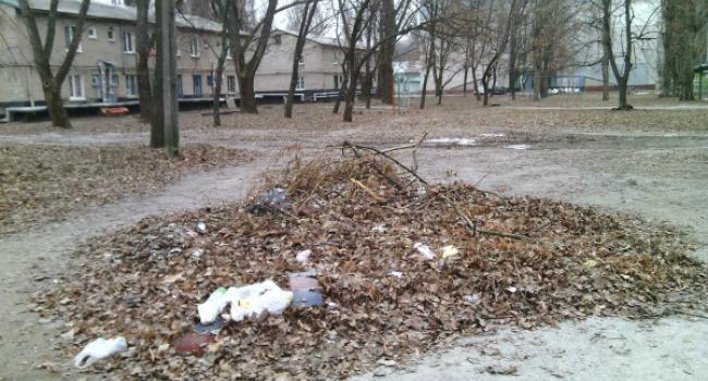 На Молодежном кучи с листьями превращаются в бытовую свалку