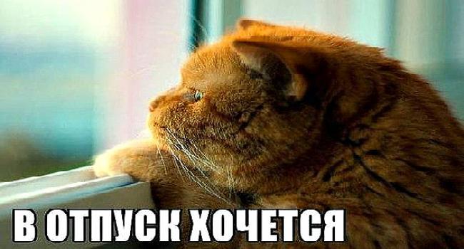Городской глава Кременчуга собрался немного отдохнуть