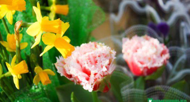 В Кременчуге на рынке не пройти – все завалено цветами