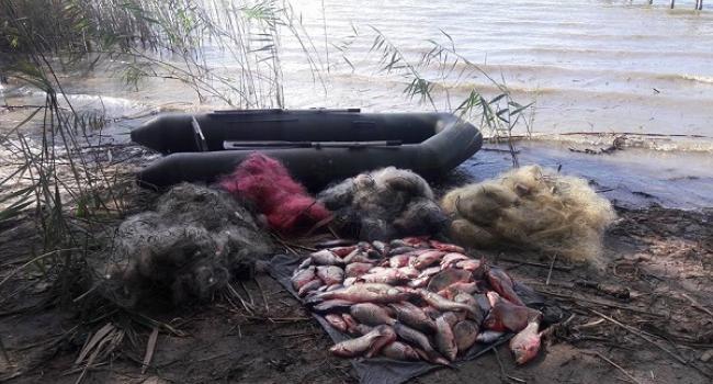 Браконьєри все-одно рибалять: за два дні лише на Кременчуцькому водосховищі виловили понад 100 кг риби