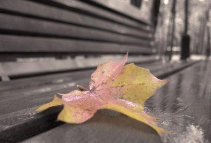 Кременчужан ждут «серые», но теплые выходные